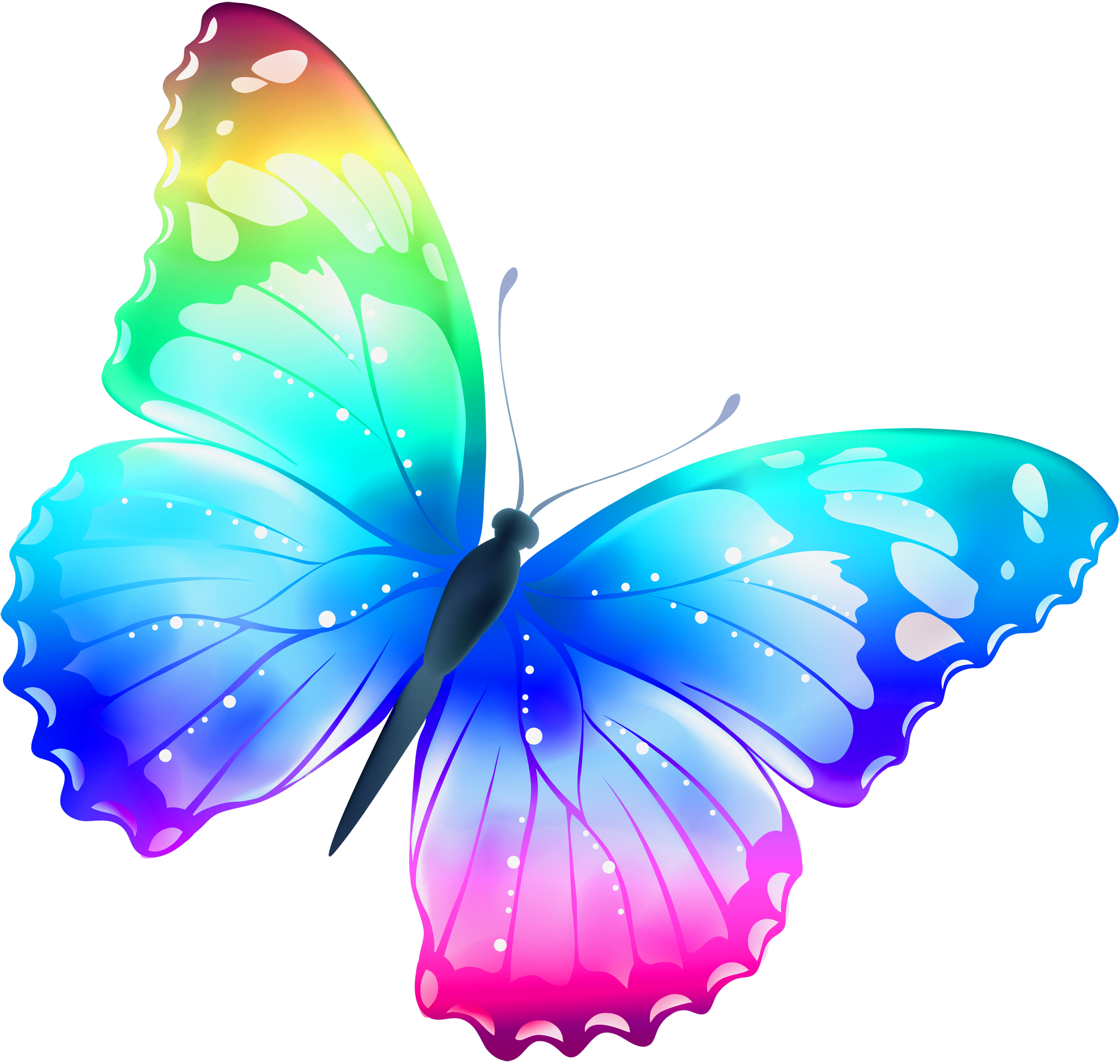 Rainbow Butterfly Png Border - View full size ?