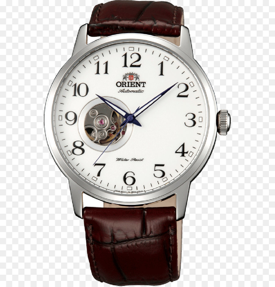 Automatic Watch Png - Watch Cartoon png download - 800*1154 - Free Transparent Orient ...