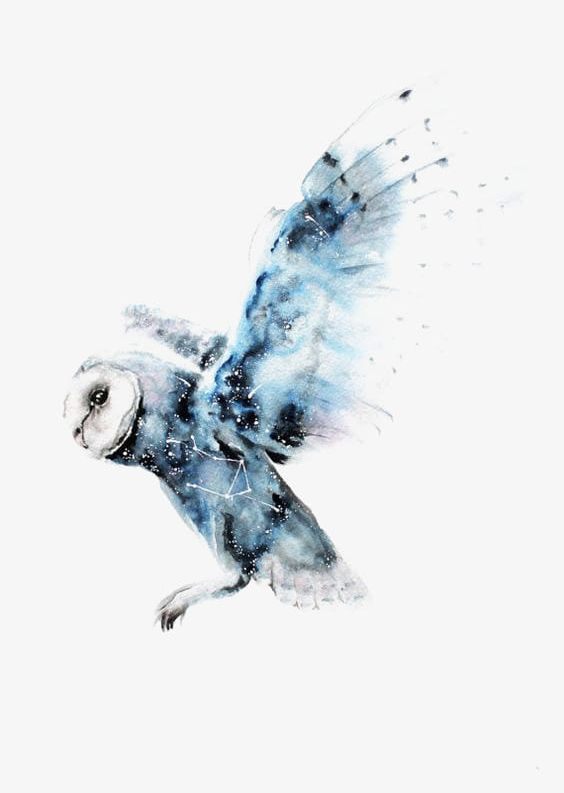 Flying Owl Png - Watercolor Owl PNG, Clipart, Animal, Blue, Blue Owl, Flying ...