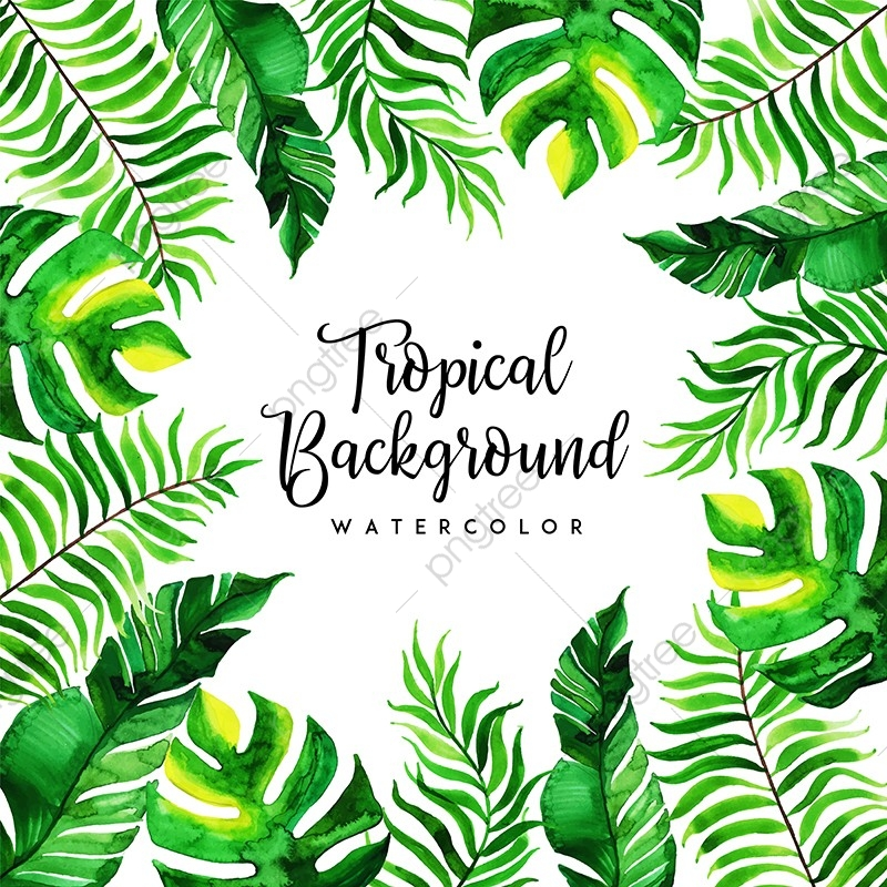 Tropical Background Png - Watercolor Tropical Floral And Leaves Background, Leaves, Tropical ...