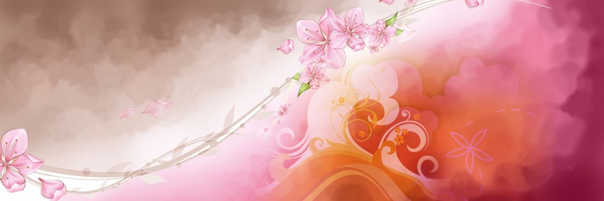Wedding Background Full Hd Photoshop 11 1181001 Png Images Pngio