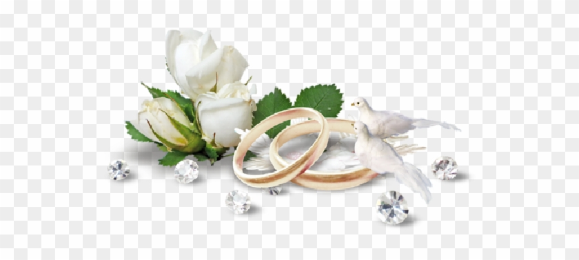 Wedding Ring Png.Interlocking Wedding Bands Png Free Interlocking Wedding Bands Png