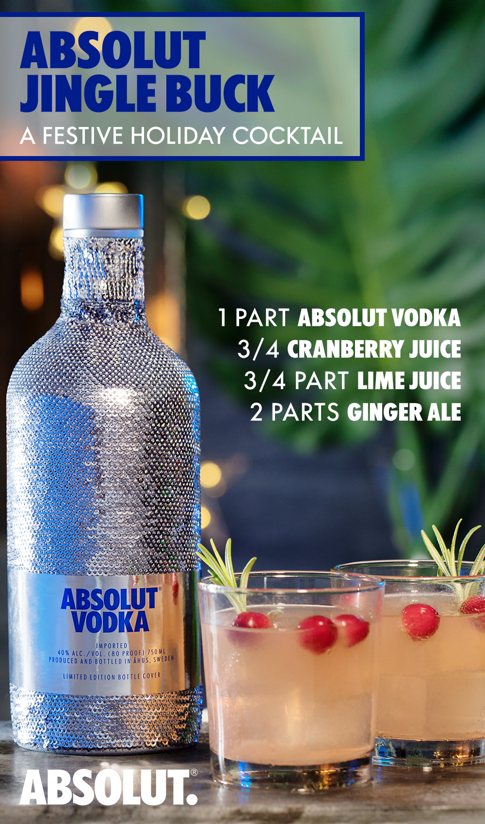Absolut Vodka Party Png - What's more festive than a cocktail at a holiday party. Enjoy the ...