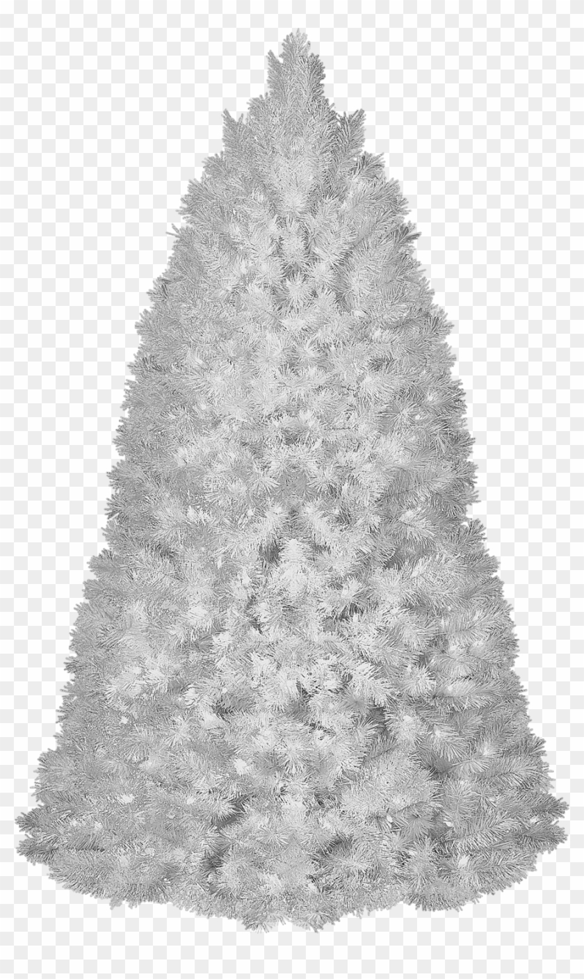 Snowy Christmas Backgrounds Png - White Christmas Tree Transparent Background, HD Png Download ...
