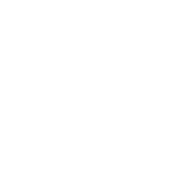 White Crown 2 Icon Free White Crown Ic Png Images Pngio