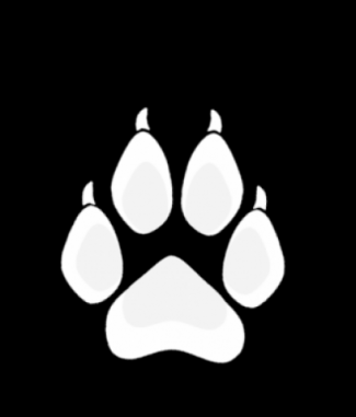 White Wolf Paw Dog Tag By Dog Tag Art 743692 Png Images Pngio Gray wolf logo graphic design, wolf logo, paw, wolf png. white wolf paw dog tag by dog tag art