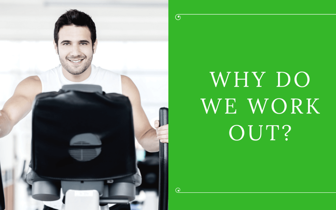 Uniontown Area Ymca Png - Why Do We Work Out? | Uniontown Area YMCA