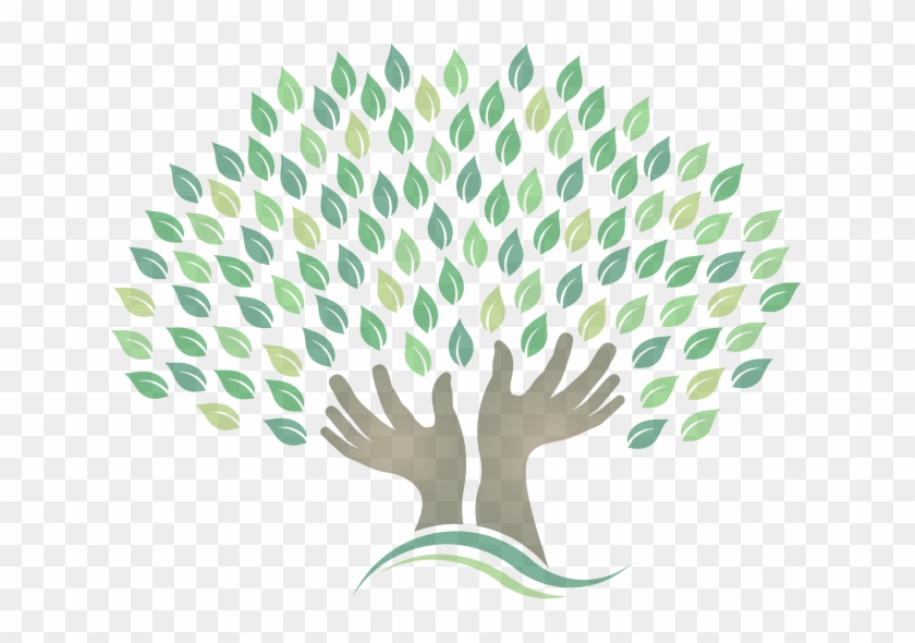 Tree Health Png - Willow Tree Holistic Health Center Offers A Wide Variety, HD Png ...