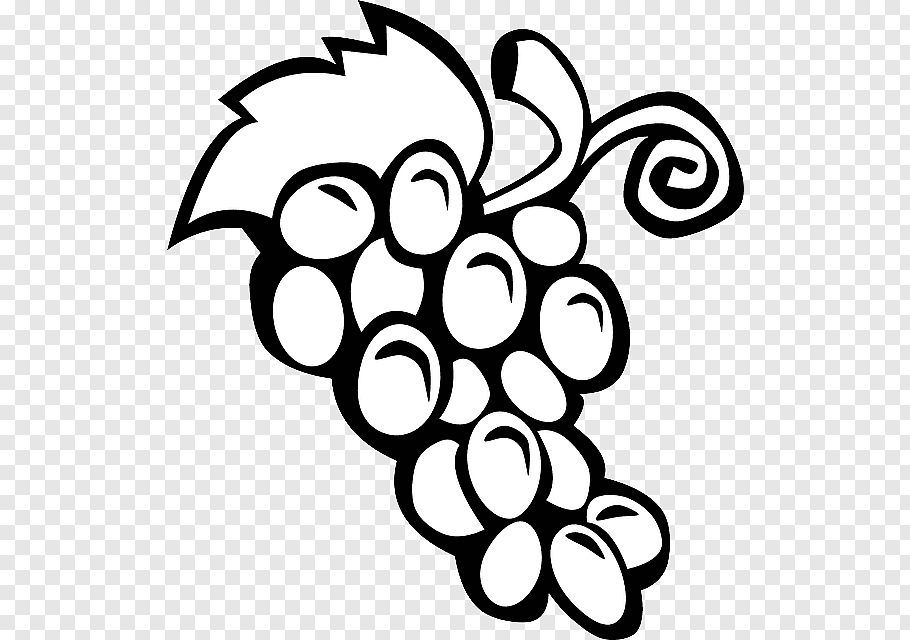 Grapes Outline Png Free Grapes Outline Png Transparent Images 100311 Pngio
