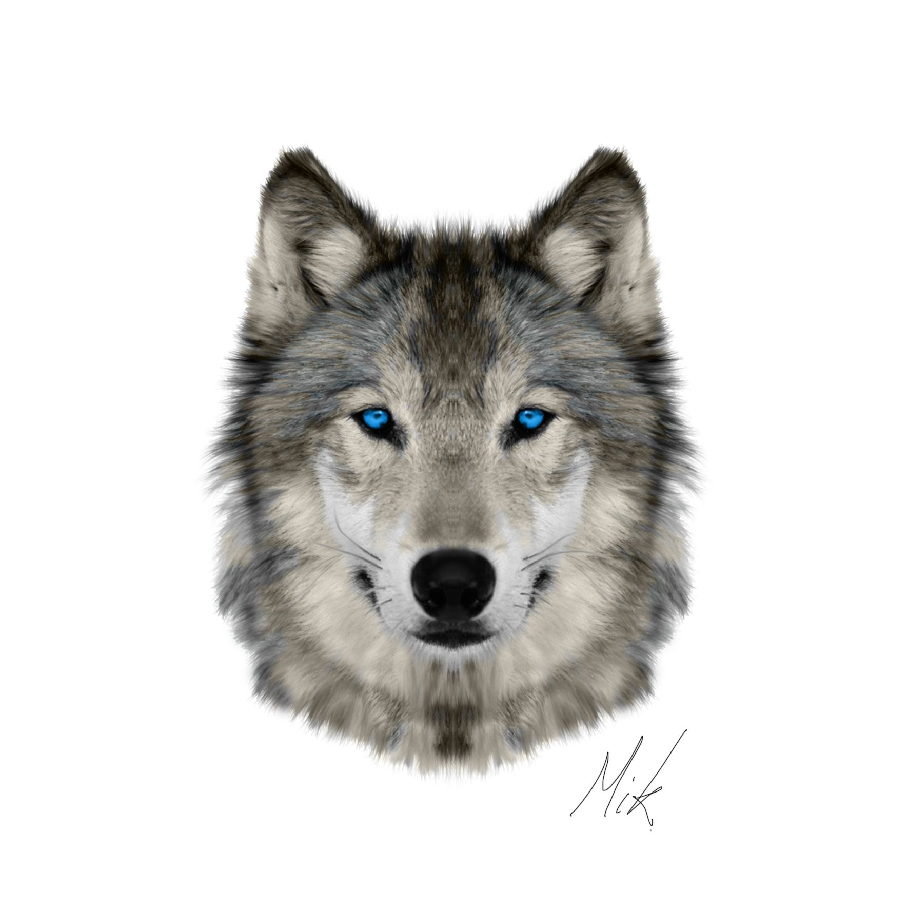 Png Wolf Head - Wolf Head Png (93+ images in Collection) Page 2