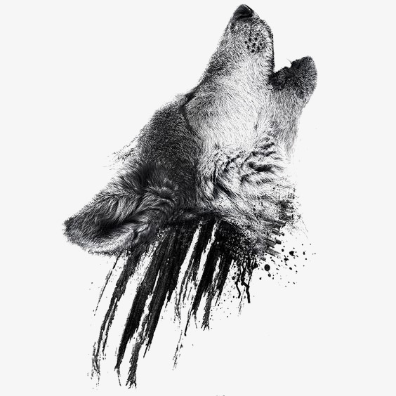 Png Wolf Head - Wolf Head PNG Images | Vectors and PSD Files | Free Download on ...