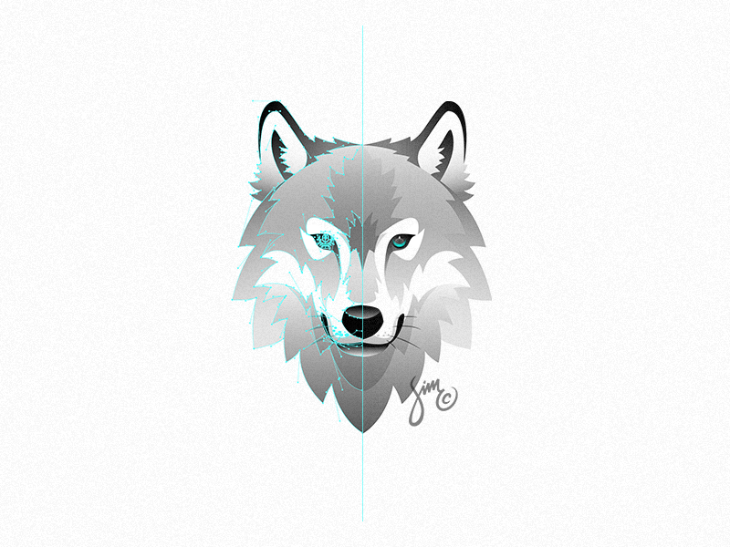 Wolf Vector - Wolf   Vector by simc on Dribbble