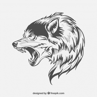 Wolf Vector - Wolf Vectors, Photos and PSD files | Free Download